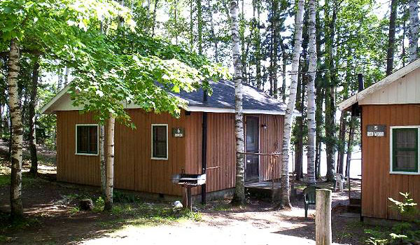 Cabins 5 and 6, nestled between trees and right off the water.